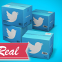 twitter_real_300x220